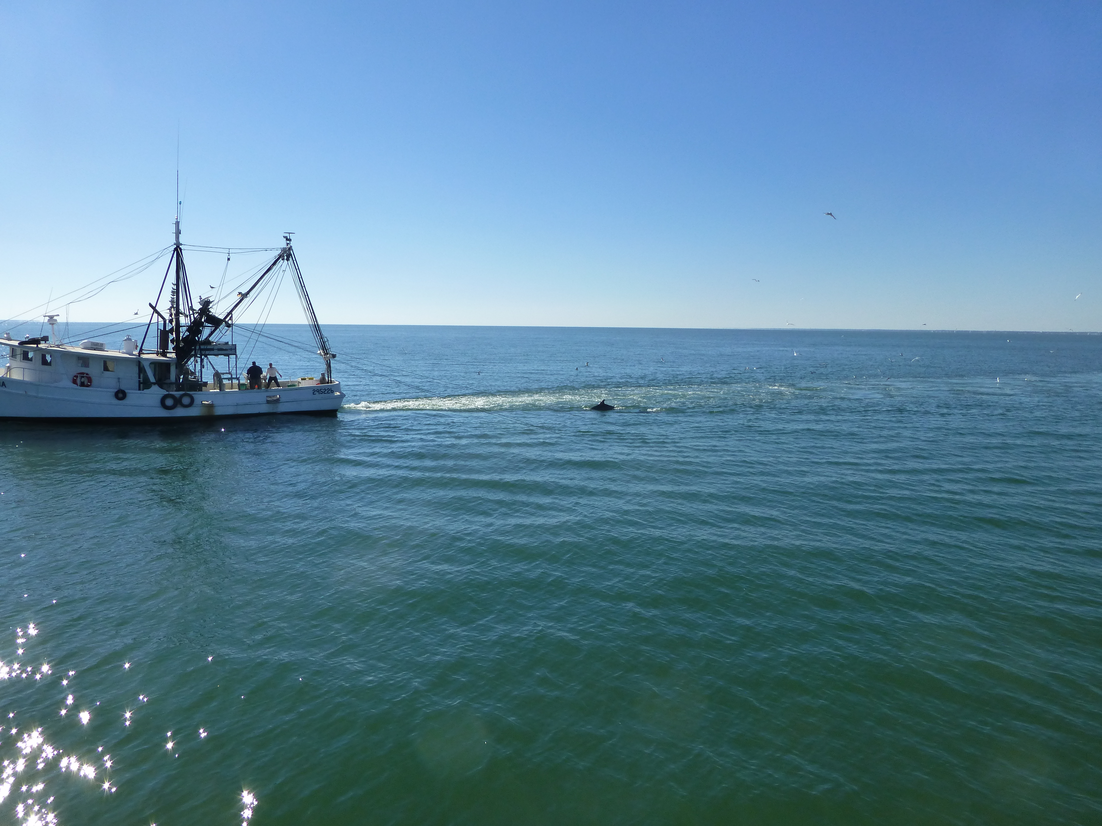 Gulfport and mississippi sound amashoo 39 s blog for Fishing in biloxi ms